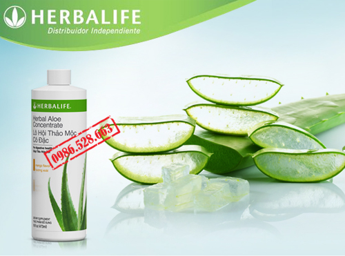 HERBALIFE ALOE CONCENTRATE 3