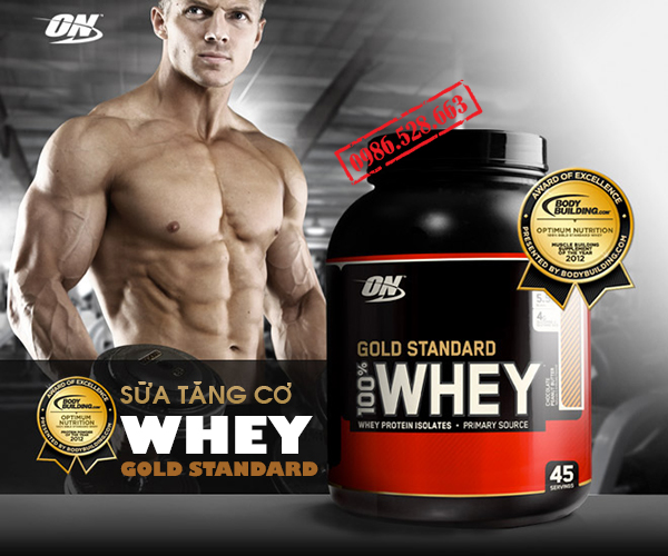 sua tang co PROTEIN 2 LBS WHEY GOLD STANDARD 2