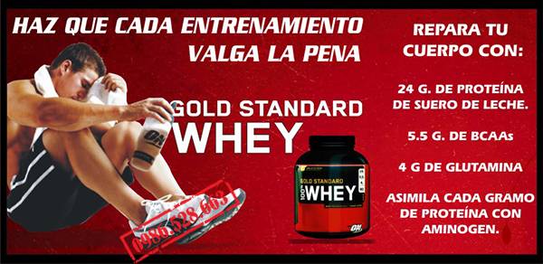 sua tang co PROTEIN 2 LBS WHEY GOLD STANDARD 5