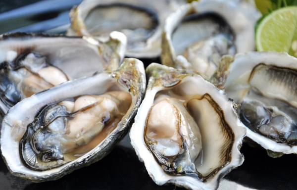 thanh-phan-oyster-extract