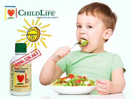 CHILDLIFE LIQUID CALCIUM WITH MAGNESIUM 4