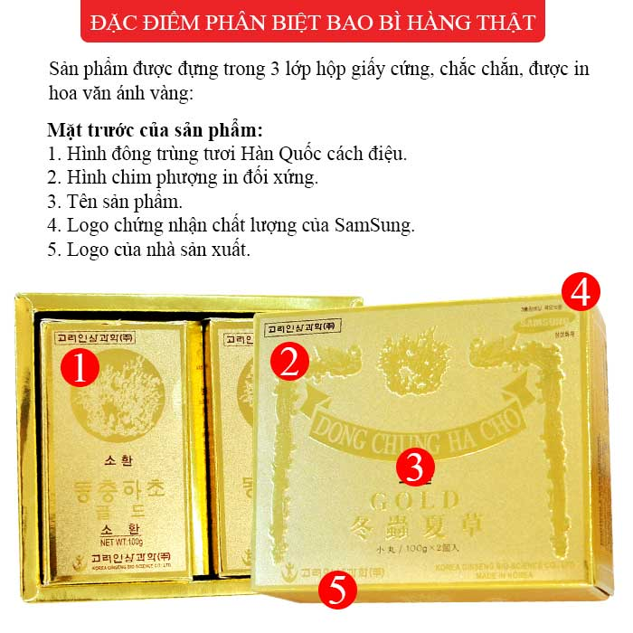 dong-trung-ha-thao-GOLD-1