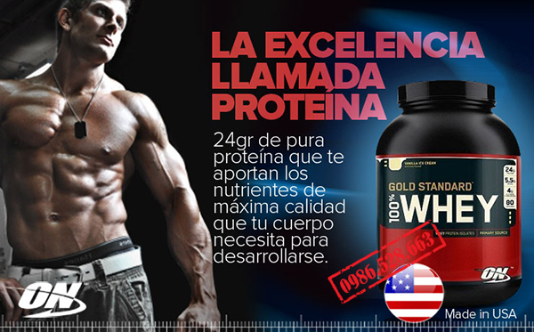 sua tang co PROTEIN 2 LBS WHEY GOLD STANDARD 4